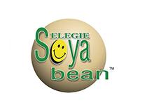 Selegie Soyabean Pte Ltd